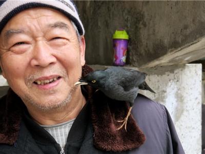 """【有意思】""""有意思""""人与鸟"""