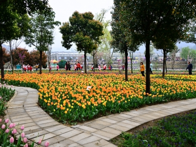 [春]生态园之美
