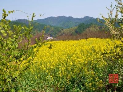 【春】-四方山春色
