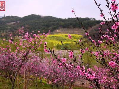 【春】最美十堰