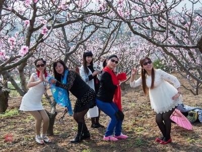 【春】桃花赏美女