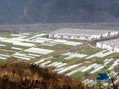 十堰市一季度农业产值预计达34.2亿元 同比增长4.5%