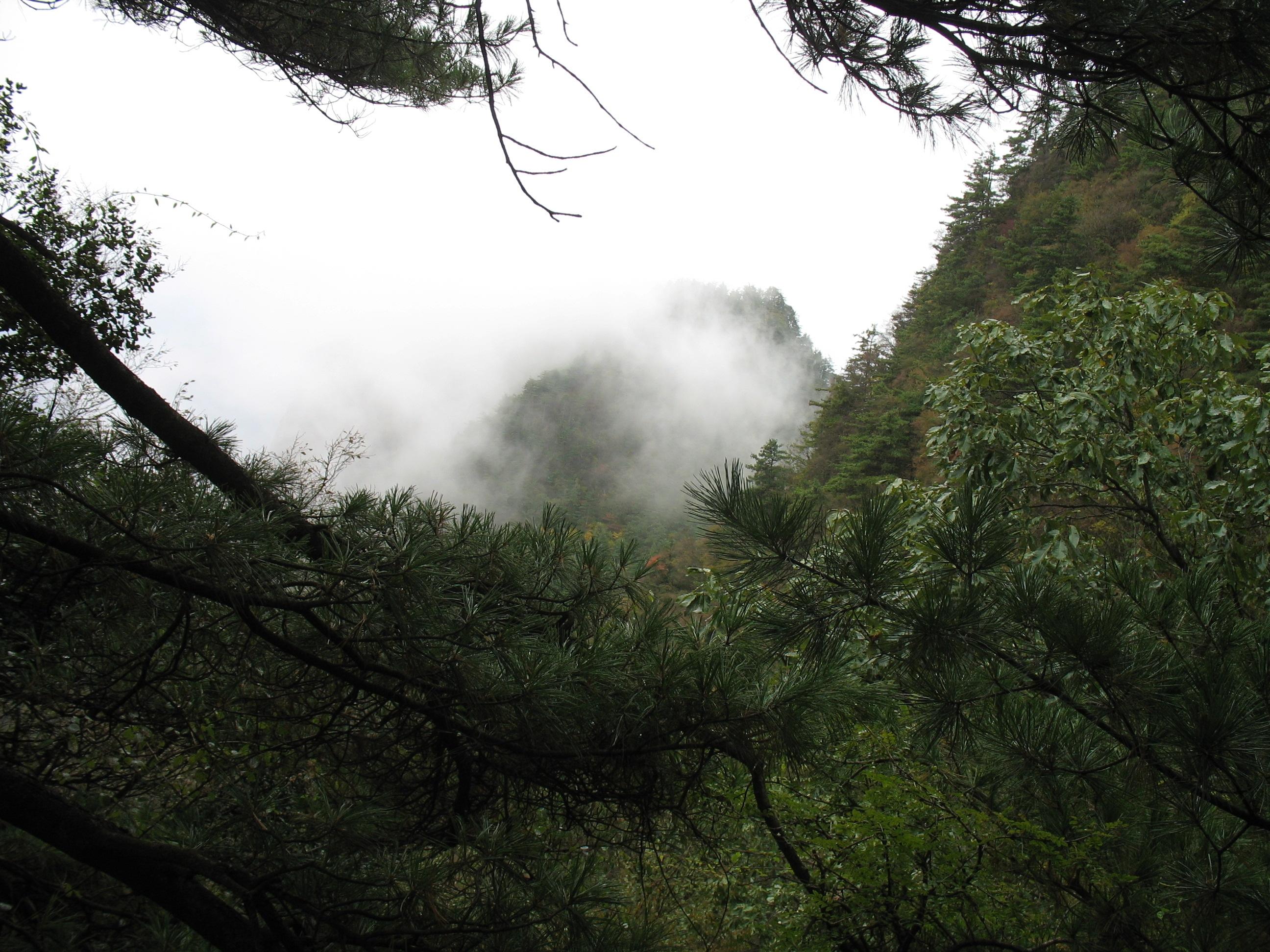 秋天的天竺山风景-旅游户外-爱十堰