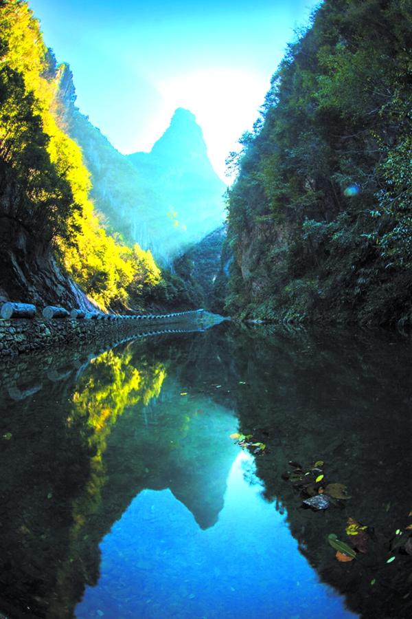 太和梅花谷位于竹山縣文峰鄉.