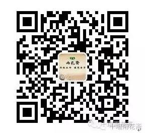 QQ图片20170525101623.png