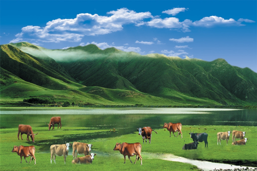 印洗尘对蒙古族牧民的生活十分熟悉,这使得他写起这方面的题材来得心应手。他常常选取草原上的一景一物,去反映牧民们的生活方式和精神面貌。在《雕花的马鞍》中,抒情主人公将一副雕花的马鞍称作是自己童年时的摇篮,马背给了我草原的胸怀,马背给了我牧人的勇敢;马背给了我劳动的欢欣,马背给了我青春的信念。这里,歌词不仅借马鞍这一牧民日常生活中极普通的用具,反映出马背民族特有的生活方式,而且颂扬了蒙古族人民勤劳、勇敢的美德和坦荡、豪爽的性格。歌词中蕴育了多少民族的骄傲,编织了多少理想的花环两句,则使人联想