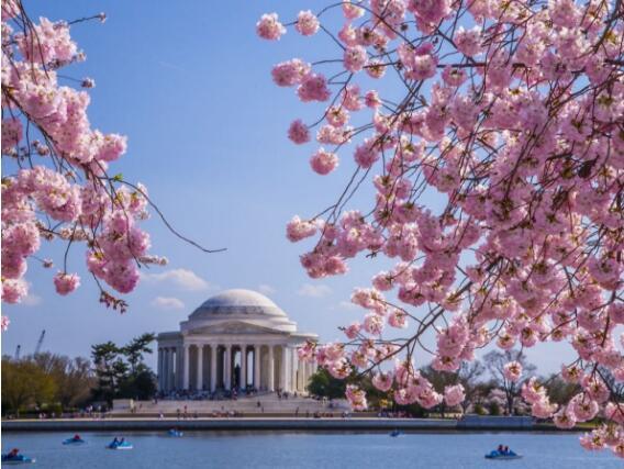 华盛顿旅游2.jpg