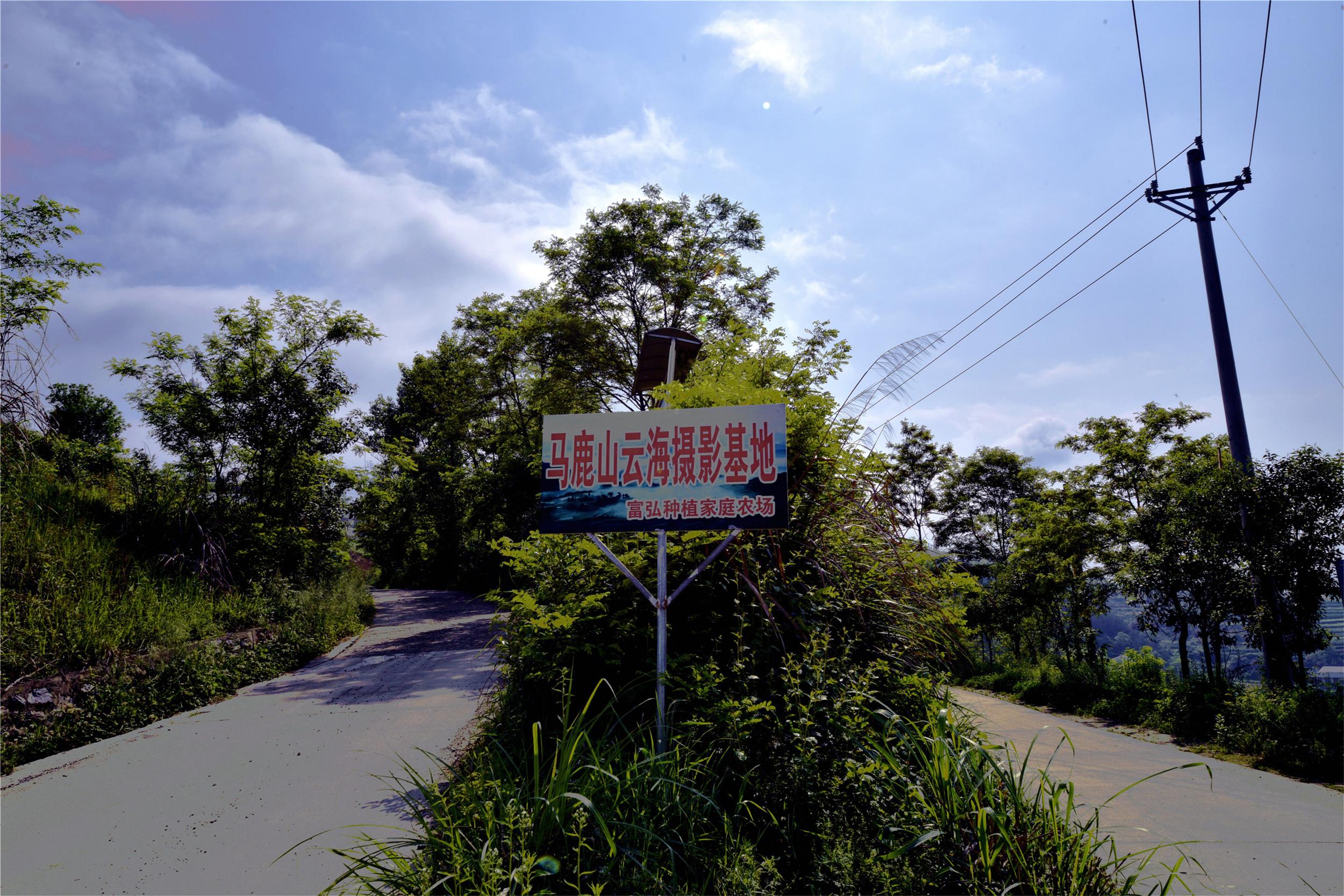 _DSC2617_副本.jpg