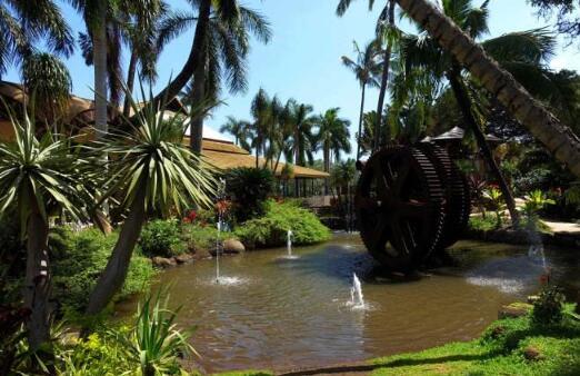 2、夏威夷热带植物园.jpg