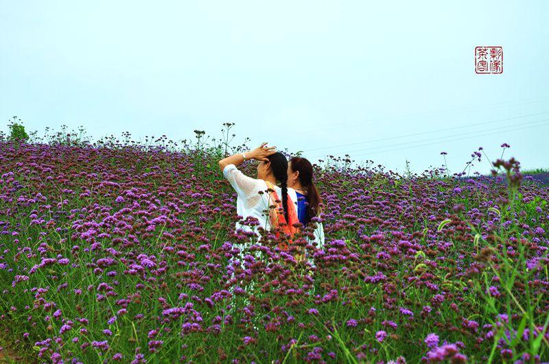 DSC_0369_副本.jpg