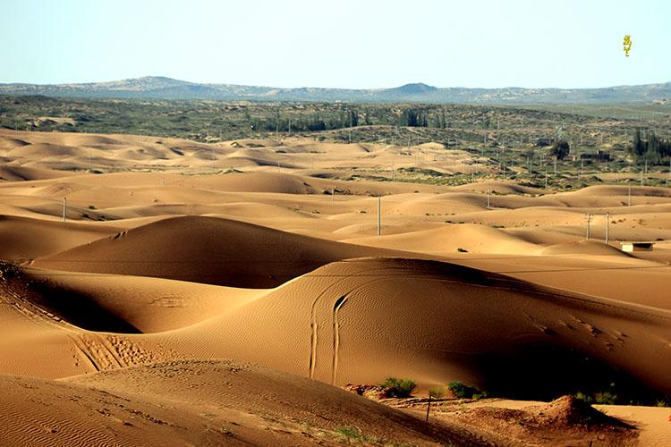 腾格里沙漠一隅