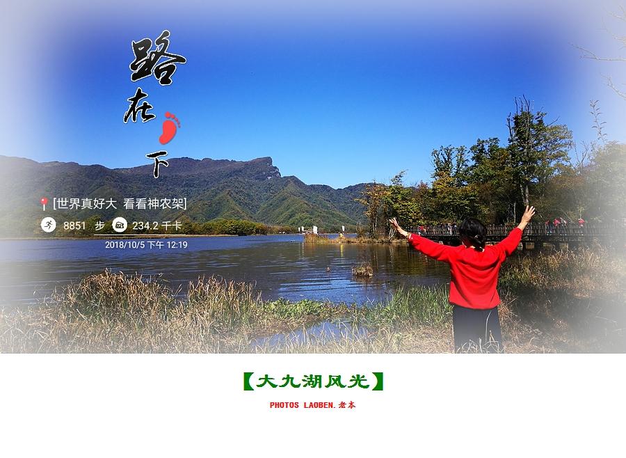 18.10.2襄阳 钟祥 神农架 大九湖 官山 280.jpg
