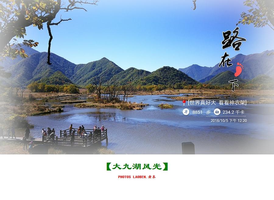 18.10.2襄阳 钟祥 神农架 大九湖 官山 281.jpg