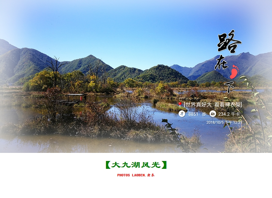 18.10.2襄阳 钟祥 神农架 大九湖 官山 282.jpg