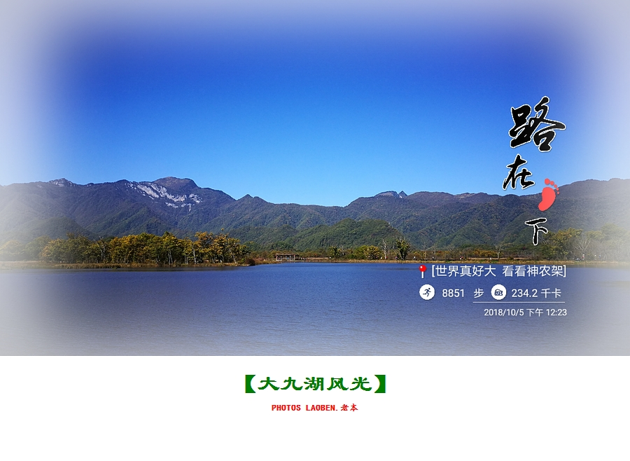 18.10.2襄阳 钟祥 神农架 大九湖 官山 284.jpg