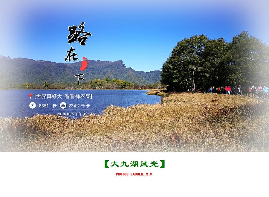 18.10.2襄阳 钟祥 神农架 大九湖 官山 286.jpg