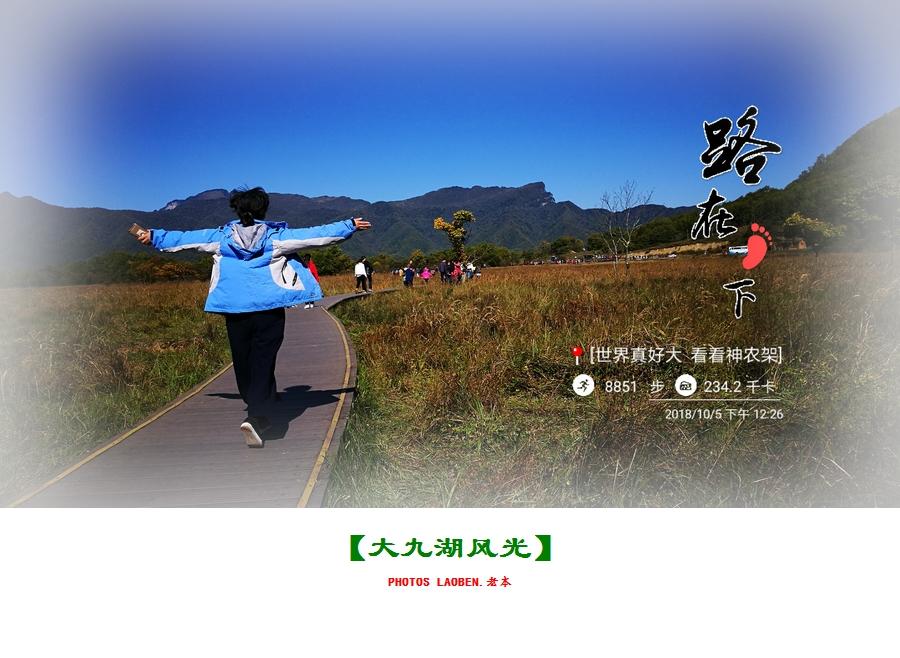 18.10.2襄阳 钟祥 神农架 大九湖 官山 288.jpg