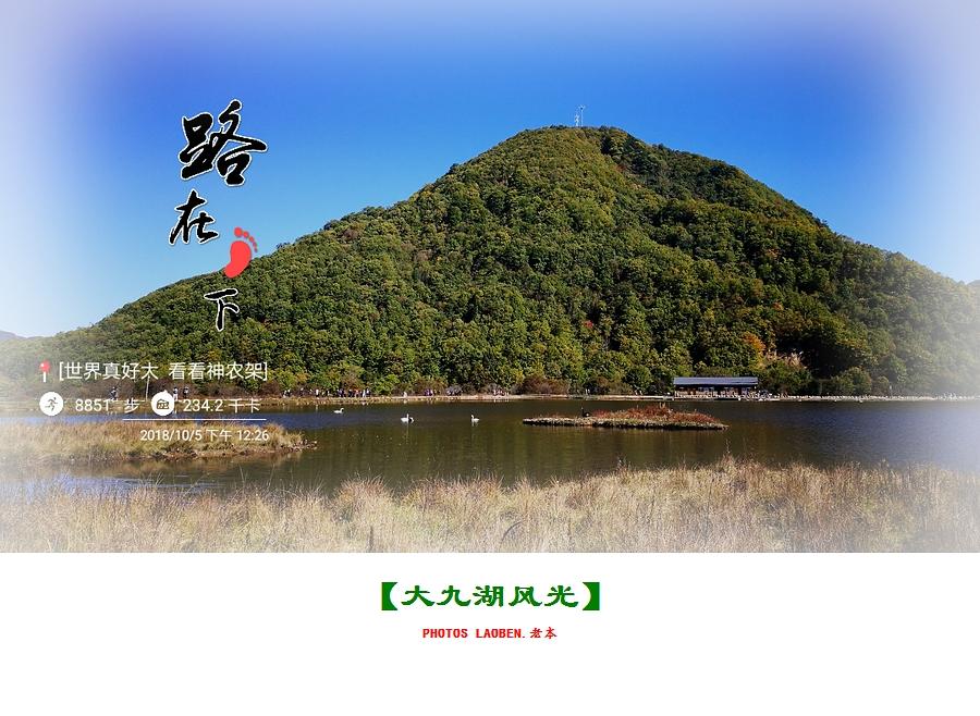 18.10.2襄阳 钟祥 神农架 大九湖 官山 289.jpg