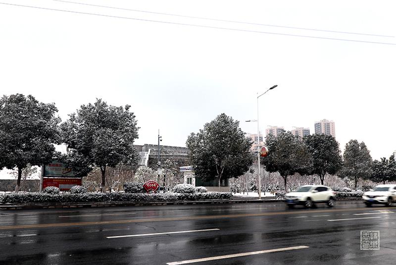 IMG_7708--.jpg